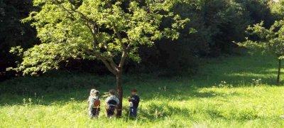 Kinder unter dem Baum